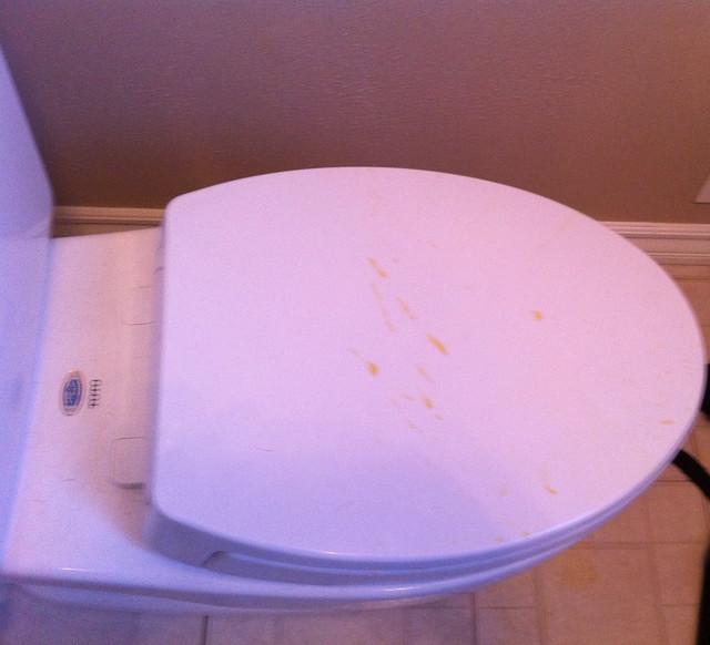 Icky toilet