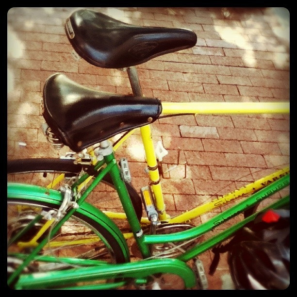 Schwinn bicycle love
