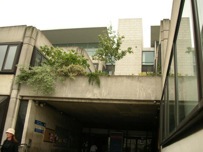 dublin trinity college 12