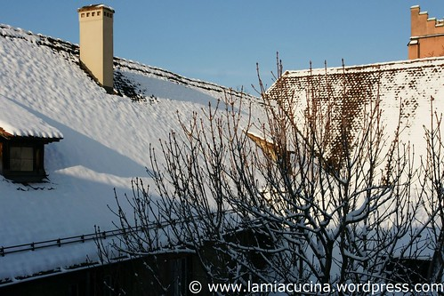 Winter 5_2010 12 02_0983