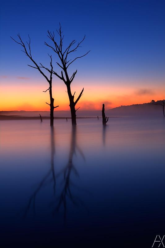 Foggy Tuttle Sunrise