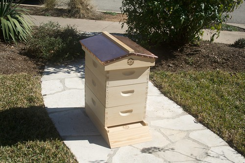 Newly completed Hive