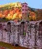 Benediktinerkloster Hirsau -Kreuzgang mit Eulenturm vor Herbstwald  - 020 by roba66