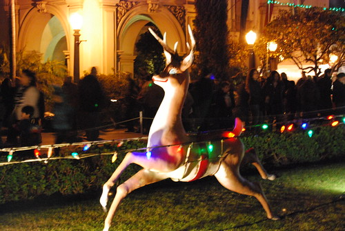 December Nights Reindeer