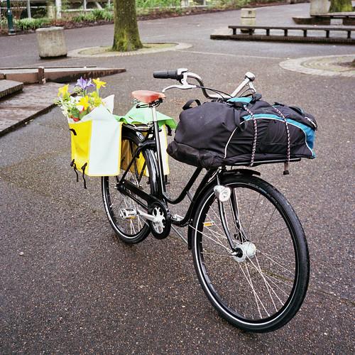 Pilen Lyx Portlandia, loaded for bear
