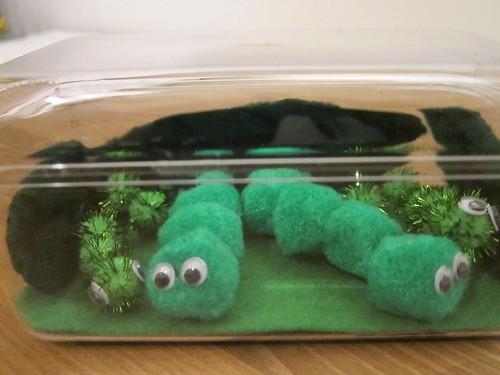 Caterpillars at Home