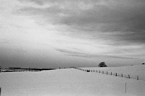Clonakilty Snowscape