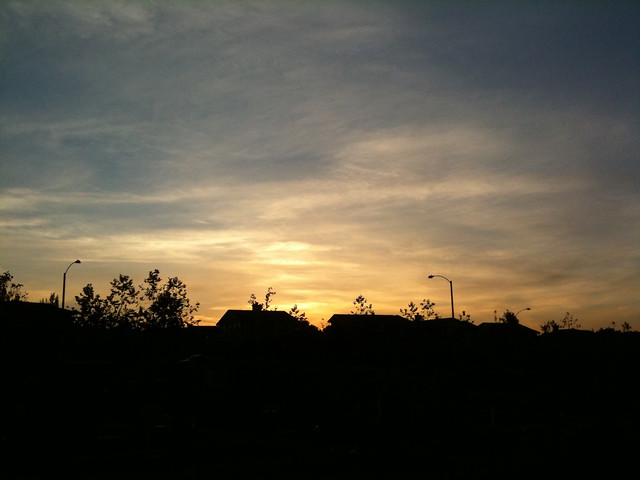 Sunset at the garden