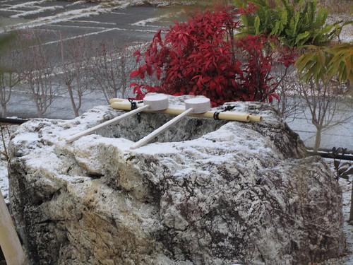 Snowy ladles