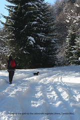 Saturday hike in the snow