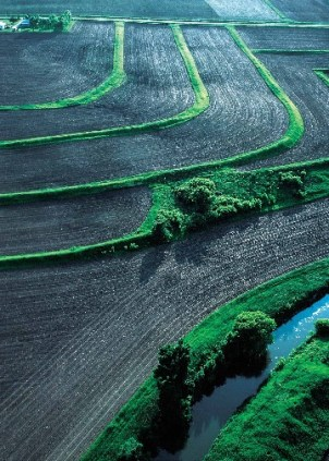 sustainable agriculture-Photo : eutrophication et hypoxia