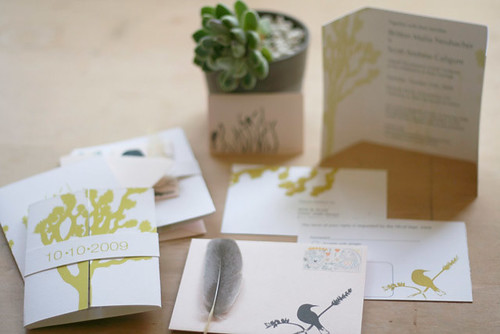 Cactus and Quail Paper Goods