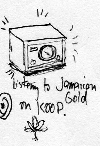 jamaican-gold