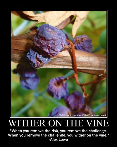 Wither on the Vine by dianecordell, on Flickr
