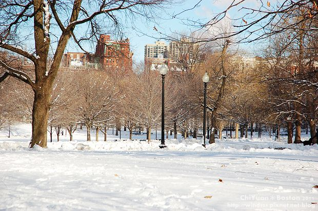 Boston Common波士頓公園02.JPG