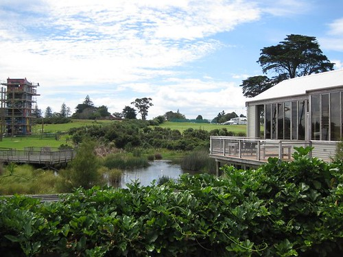 Butterfly Creek, Auckland 1