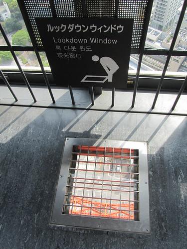 Lookdown window