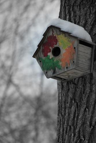 Day 23 - Birdhouse