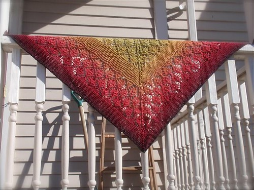 Maple Madrona Shawl