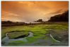 Tanah Lot -Green angle by sandbo08