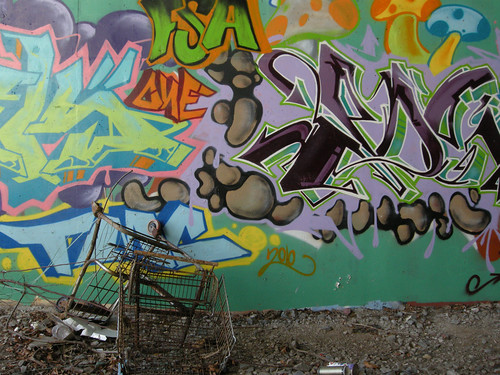 graffiti + grocery cart 1