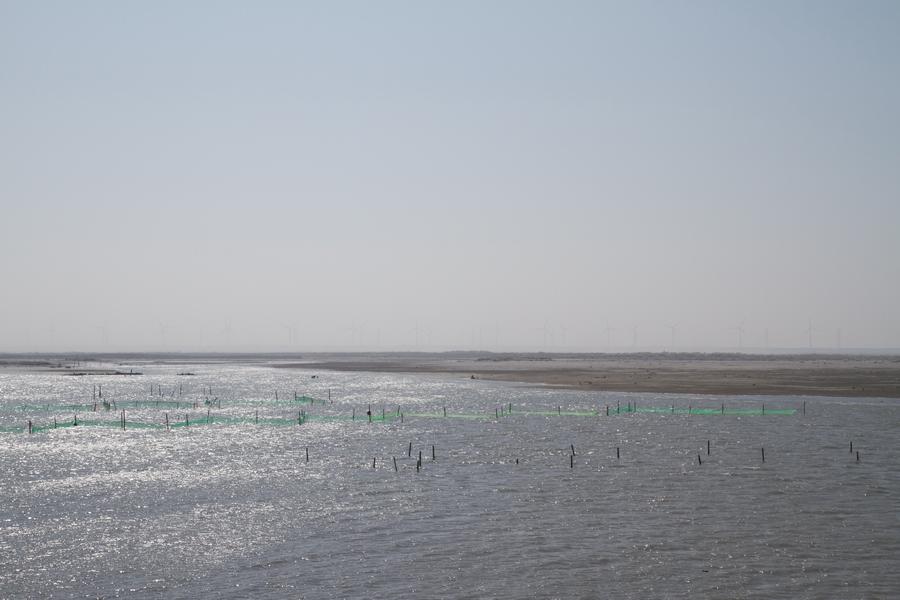 20110205_08_Sea bank_01