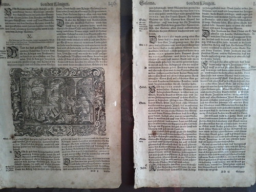 The old Bible pages