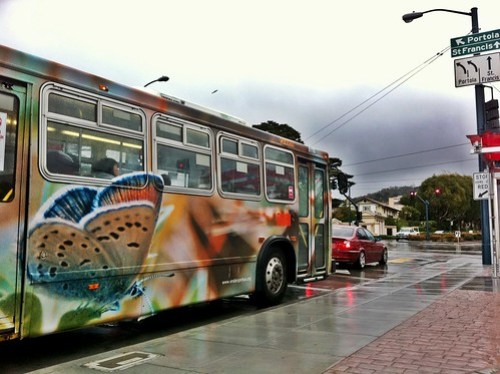 Endangered Species - Mission Blue Butterfly wrapped @sfmta_muni bus is awesome!