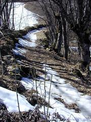 dscn4297-path