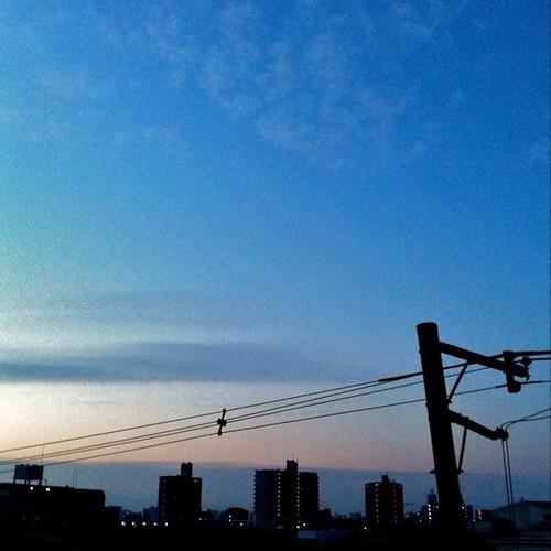 (^o^)ノ < おはよー! 今朝の大阪、とっても空気が澄んでるよ! 今週も笑顔でよろしくー! #morning #Osaka