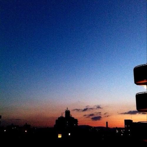 おはよ!今朝の大阪、ちと寒空です。