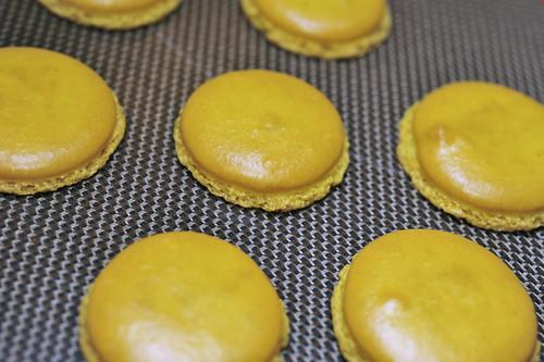 Macaron Class @ Palate Sensations