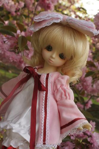 123/365 Hina Ichigo BJD