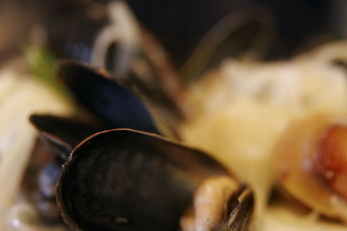 steamed mussels 025