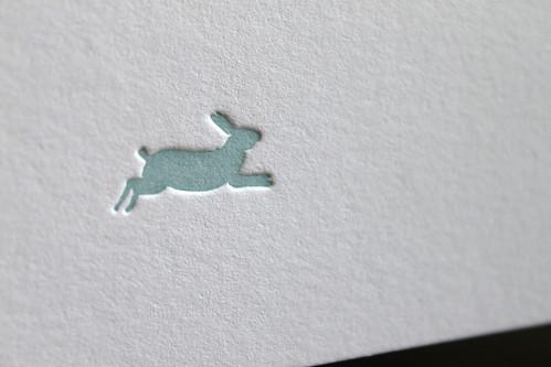 rabbit 5
