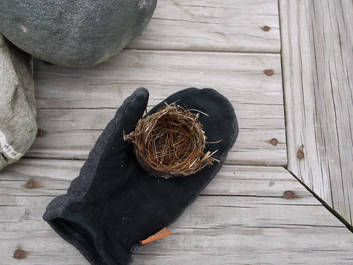 Nest and mitten
