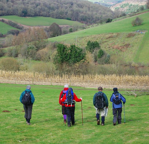 20110227-24_Descent into the Valley Brook Valley by gary.hadden