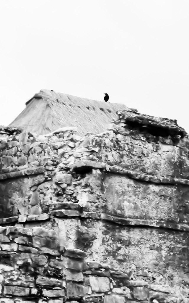 Scary Tulum Ruins