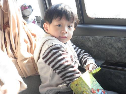 海綿寶寶存錢筒6