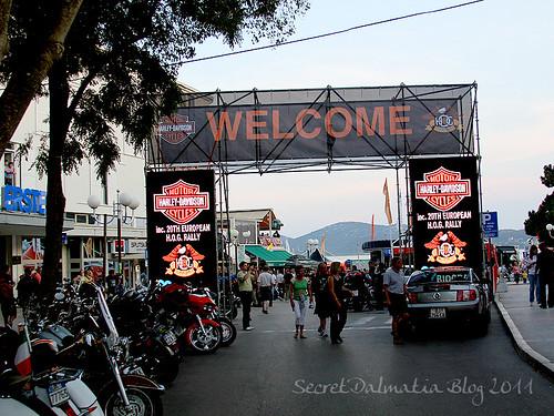 Enter the Harley Davidson realm