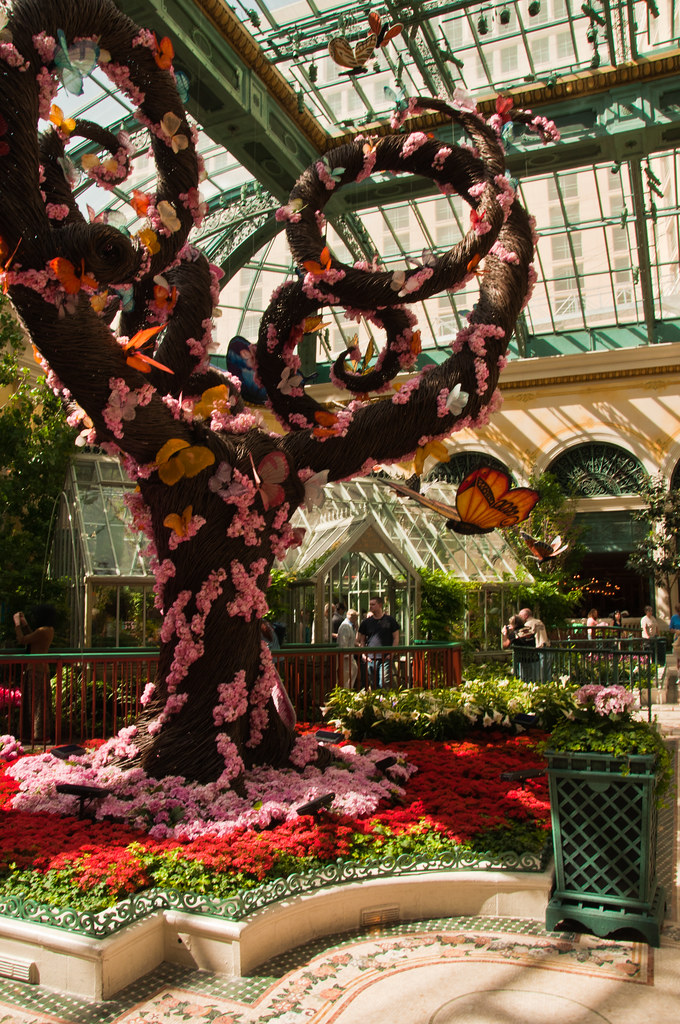 In the greenhouse, Bellagio Hotel, Las Vegas
