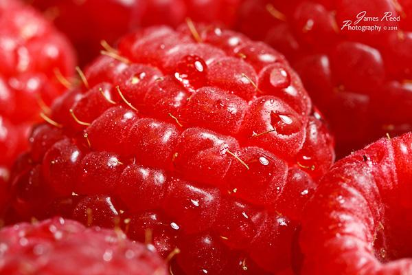A raspberry closeup.