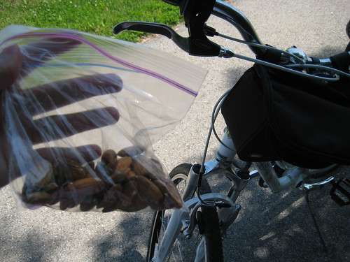 almonds, bike