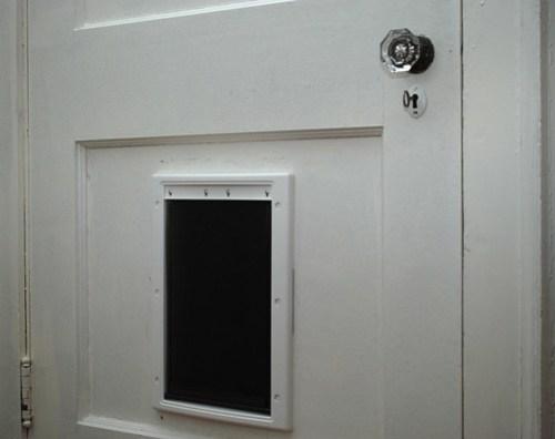 new pet door