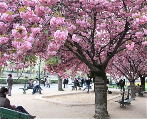 Eden ~ Paris ~ MjYj by MjYj