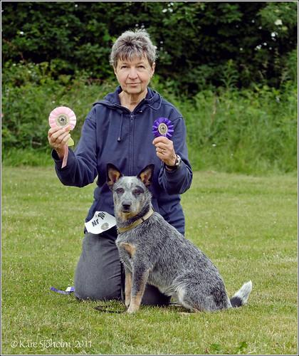 110618 Happy Cattledog owner