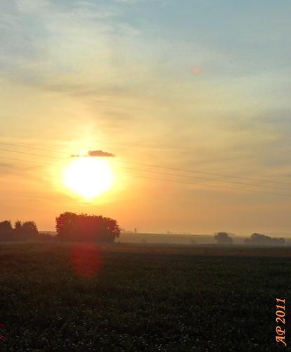 Une nouvelle aube / A New Dawn