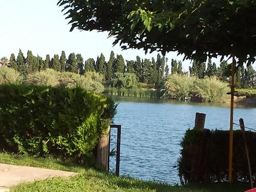 Rio Ebro. Deltebre