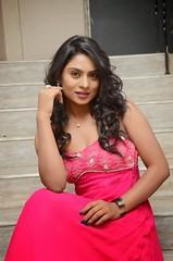 South Actress Deepika Das Hot in Pink Dress- Photos Set-6 (11)