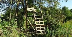 """Der Hochsitz. Die Hochsitze. Oder: Der Jägersitz. Die Jägersitze. Dieser Hochsitz steht vor einem Baum. • <a style=""""font-size:0.8em;"""" href=""""http://www.flickr.com/photos/42554185@N00/29865649004/"""" target=""""_blank"""">View on Flickr</a>"""